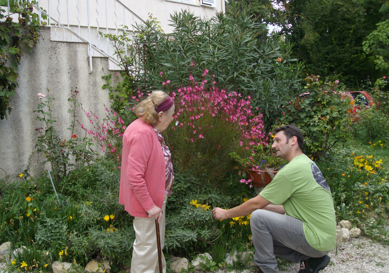 Cours de jardinage feeling rouge un paysagiste vos c t s for Cours de conception de jardin